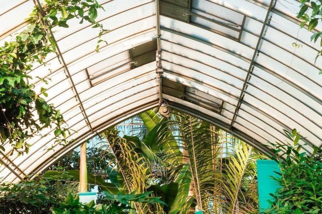 green-house-1209313_960_720