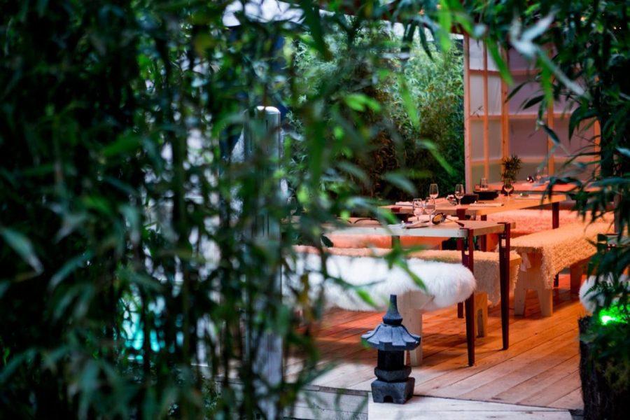 _pierremonetta-bambouseraie-jour-buddha-bar-hotel-paris-l