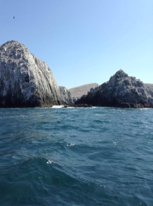 Pesca Ixtapa Zihuatanejo (17)