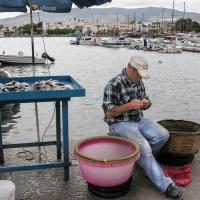 Insel Kos 2019 – Ferien im griechischen Inselparadies