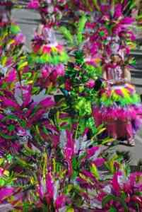 Grup de Carnaval els guapus