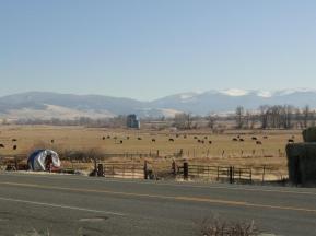 Prairie Countryside