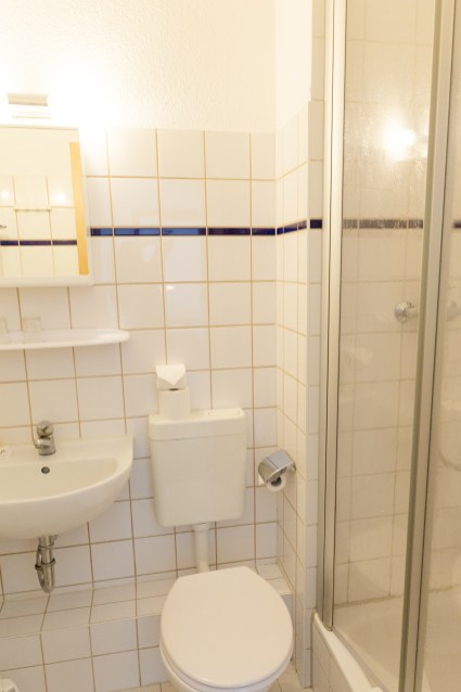 helles Badezimmer mit Toilette und Dusche