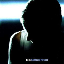 Cover from Hothouse Flowers 1998 album Born