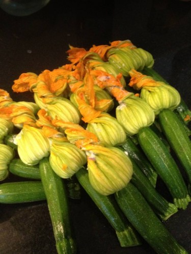 Beautiful Zucchini Flowers after Stuffing
