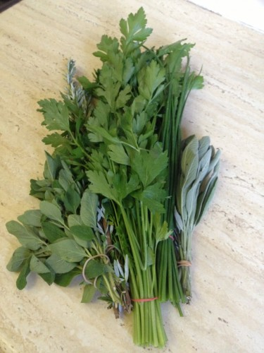 Bunches of different herbs.