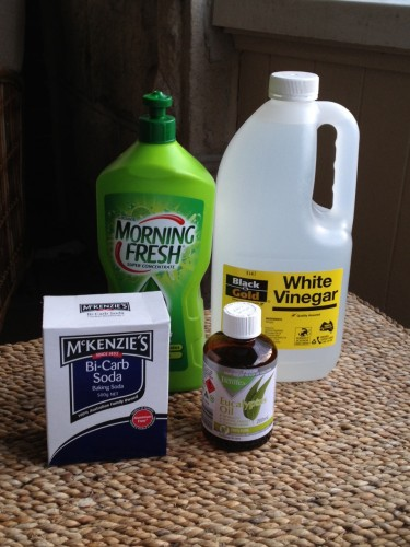 Making my own non-chemical, non-toxic cleaning product.