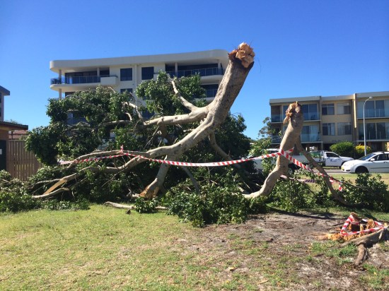 A lot of damage at Little Beach