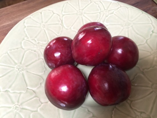 The last of the plums for this season