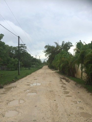 The road leading to Pandanus Bay