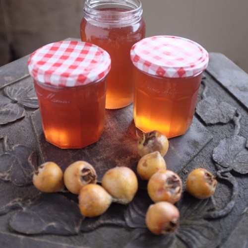 Medlars turn into beautiful, rosy pink jelly