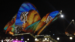 A Day at the Races, Treasure Hunting, The Sleepy Zoo, and Vivid Sydney