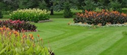 Best Lawn Gadgets For Great Lawns