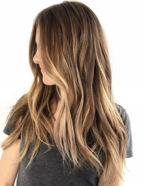Honey Blonde Light Brown Hair