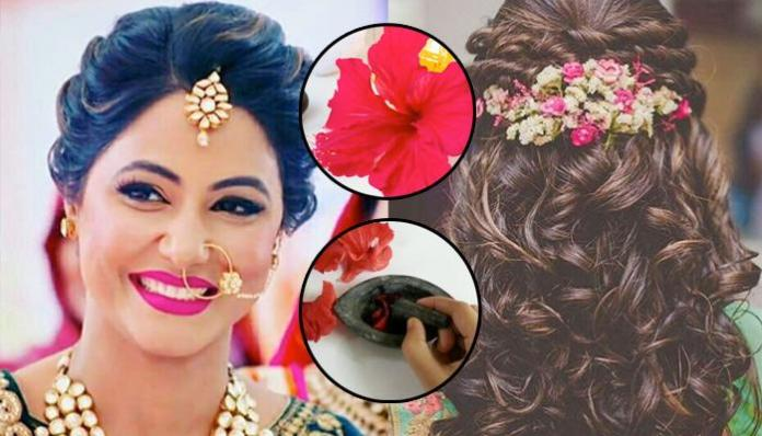 Chinese Hibiscus for Hair