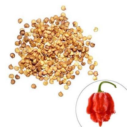 Hottest pepper seeeds