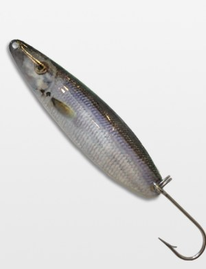 Silver Thunder Lure