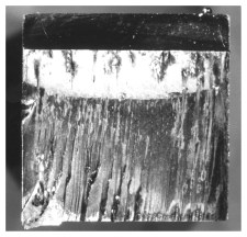 Fracture surface of single crystal turbine alloy