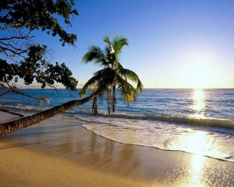 Туры на Гоа в апреле пляж вечер