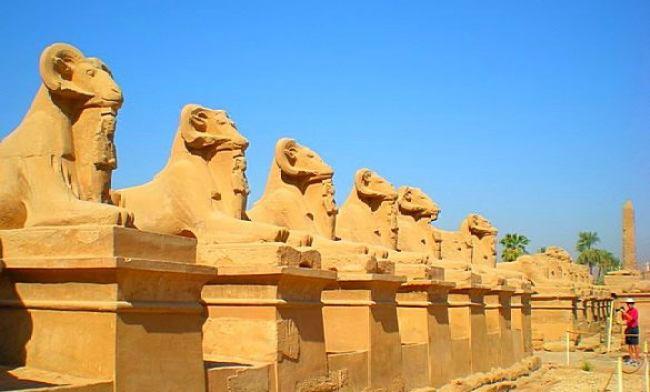 Туры из Житомира в Египет в январе_2