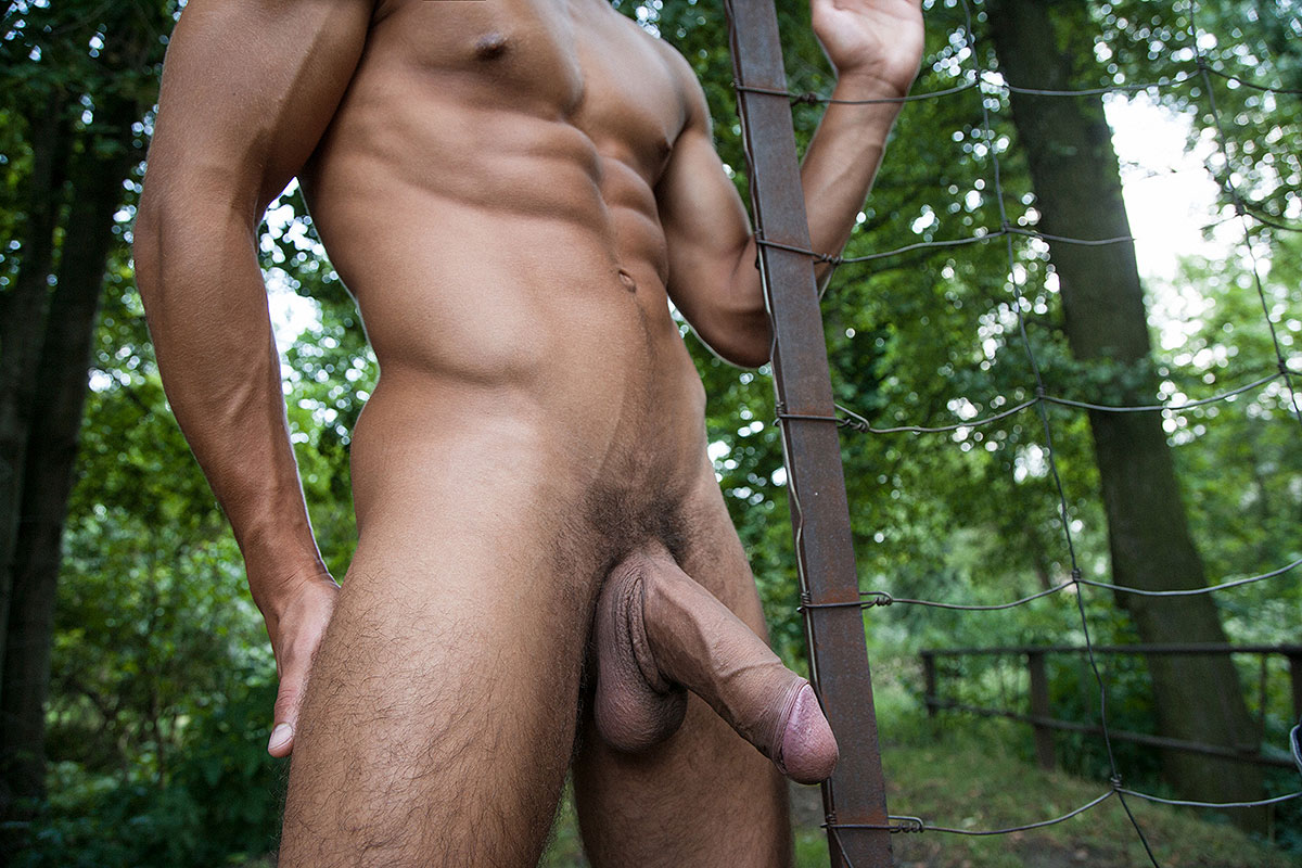 BelamiOnline: Peter Annaud Art Collection By Rick Day