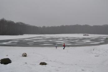 sneeuw op en rond het Hengelhoefmeer