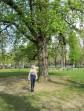 Moi-même au Parc Ranelagh, arrivée depuis la mi-février dernier à Paris pour un séjour de recherche de trois mois dans le cadre de mon doctorat sur Proust.