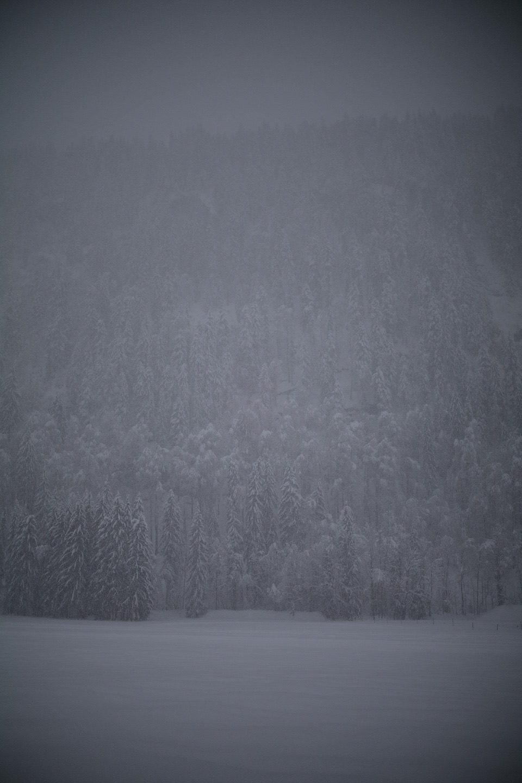 Temps sombre et neigeux ce dimanche au Grand Bornand