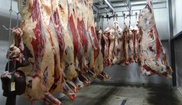 What is Halal Meat and Food?