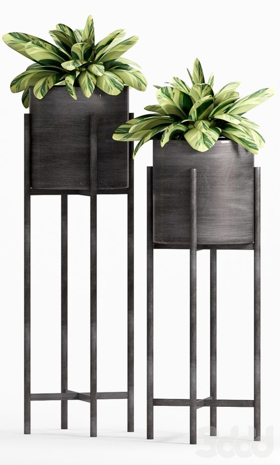 Flowers Plant Stands Modern