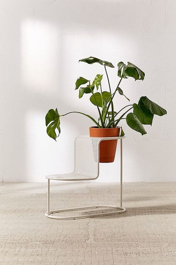 Modern Wire Plant Stand