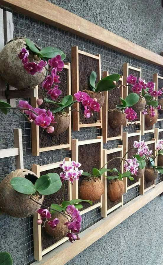 Wall Flower Pots