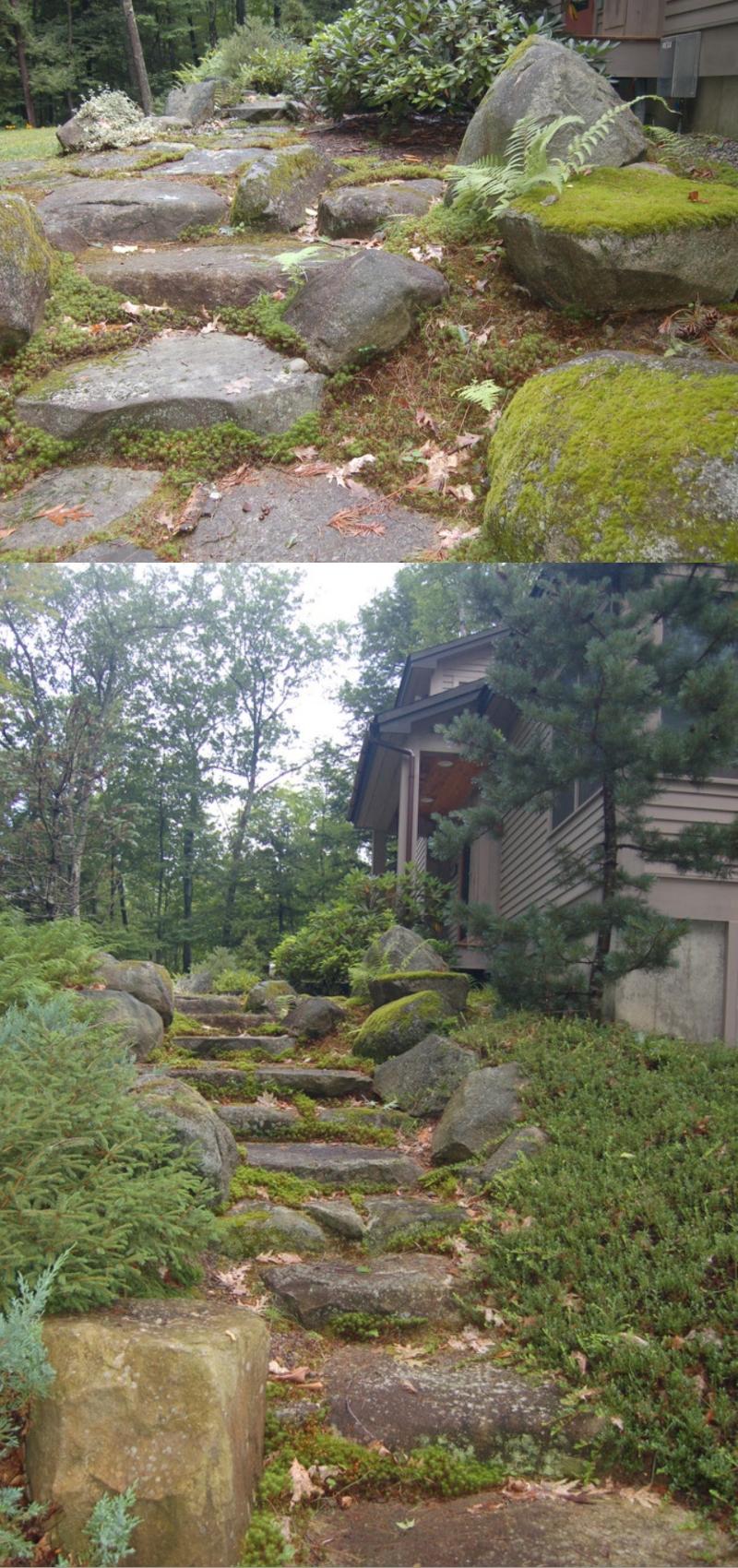 backyard rock design