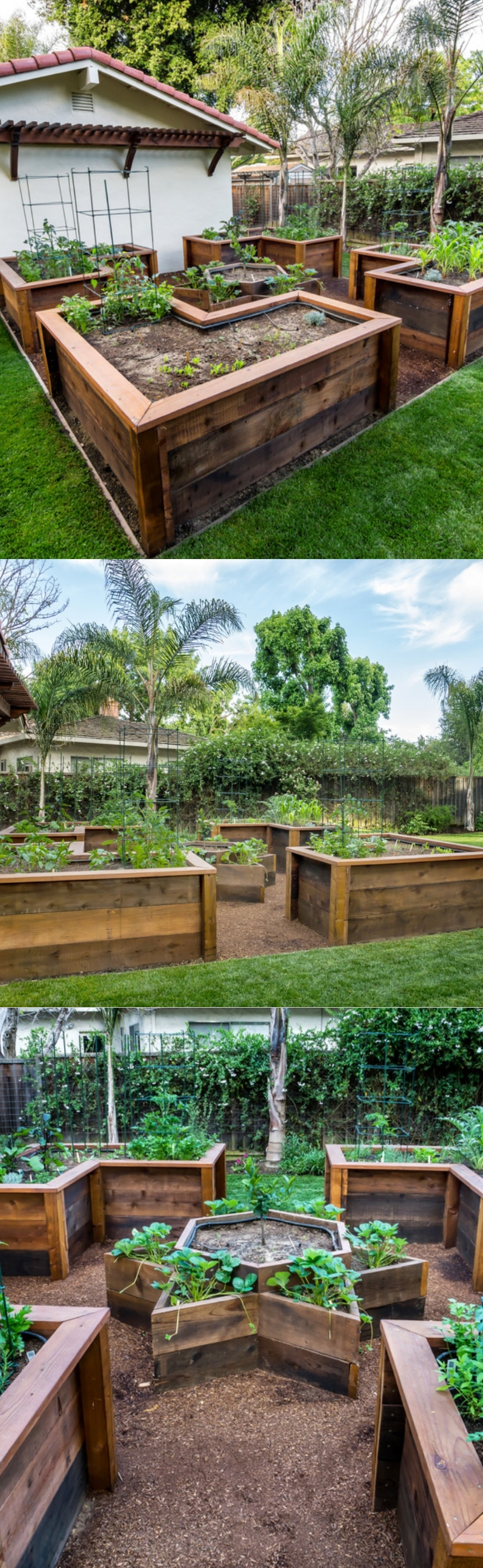 raised bed garden layout
