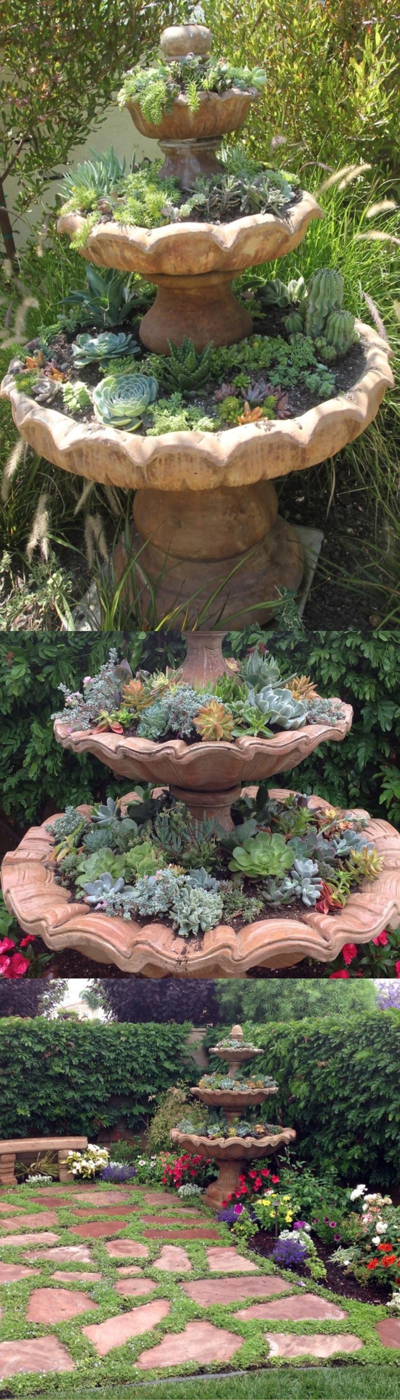 succulent garden landscape ideas
