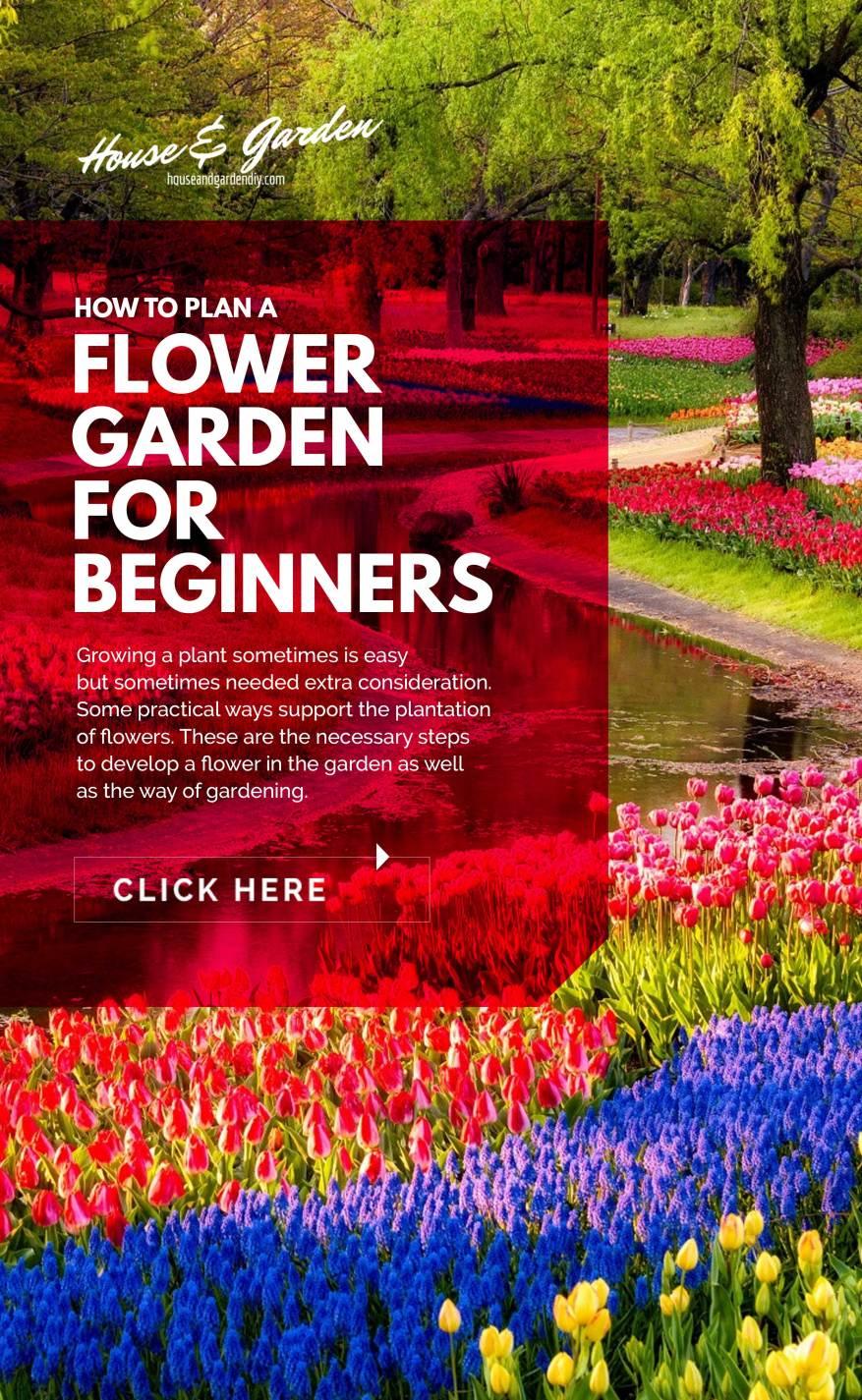 annual flower garden design pictures