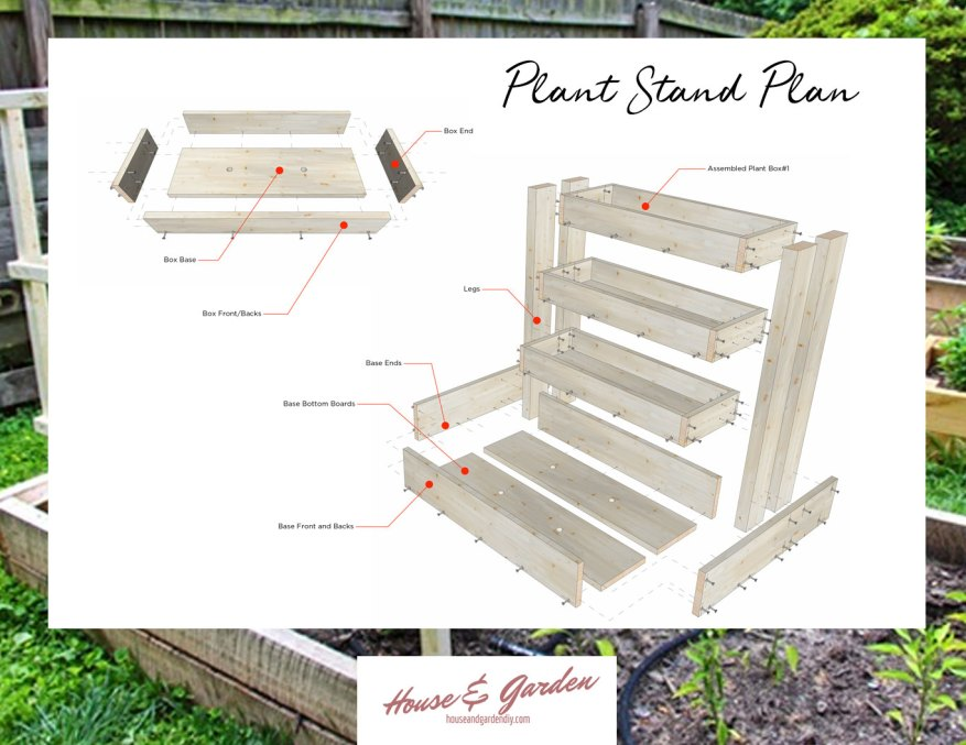 plant stand plan