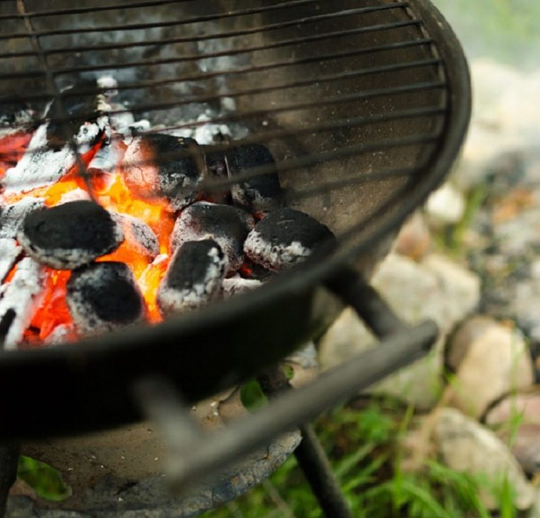 Should You Use Direct or Indirect Heat on the Grill?