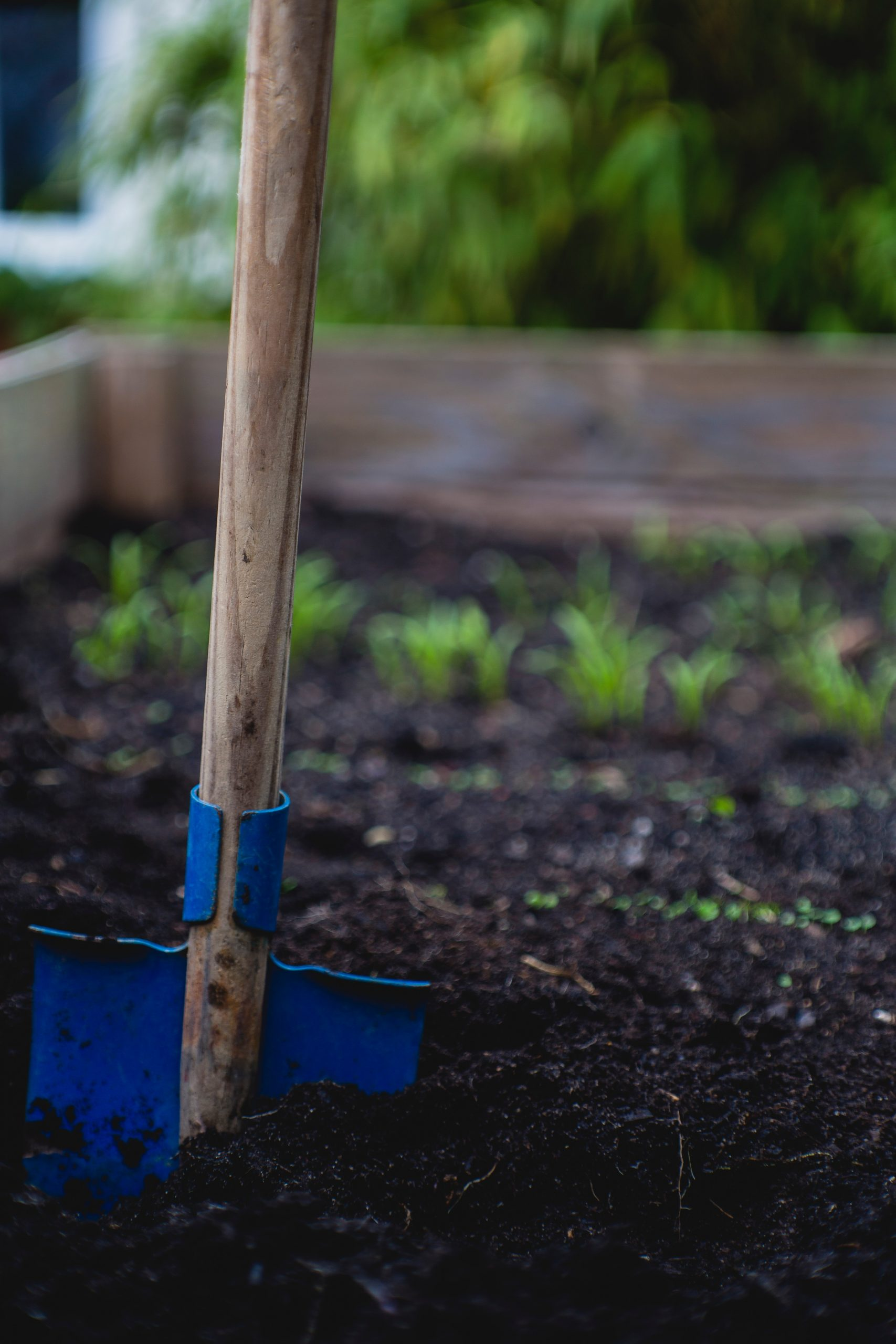 Easy Ways to Prepare your Garden for Spring
