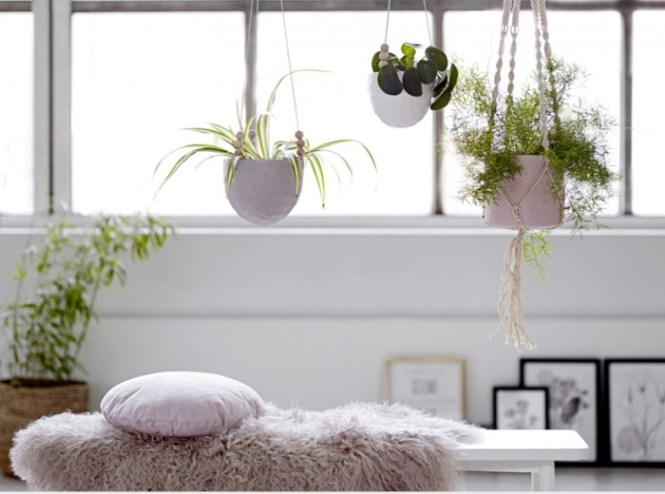 Living Room Small Layout Ideas Uk Feng Shui Plants Awesome