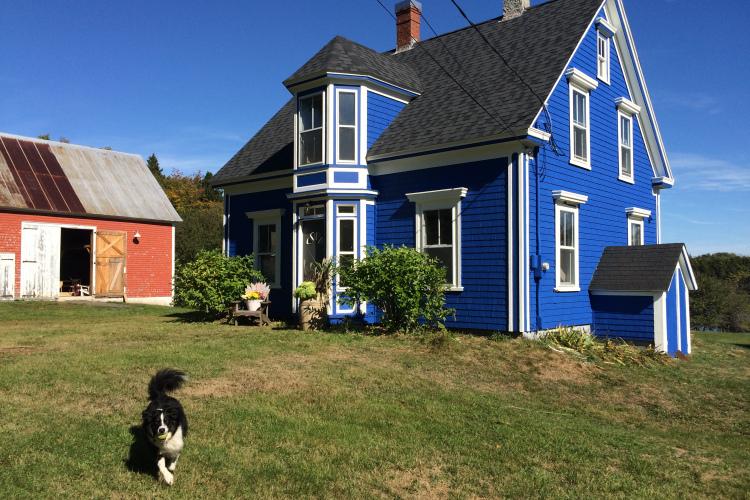 Blue House Red Barn in Lunenburg Nova Scotia