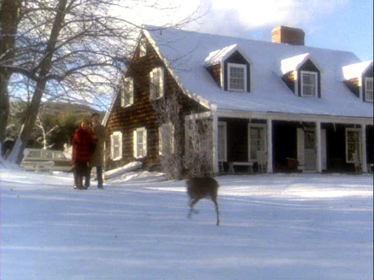 Funny-Farm-house-Cue-the-Deer