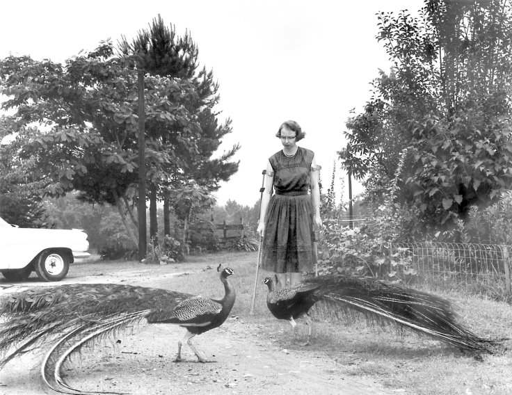 Flannery O'Connor's Andalusia Farm in Georgia