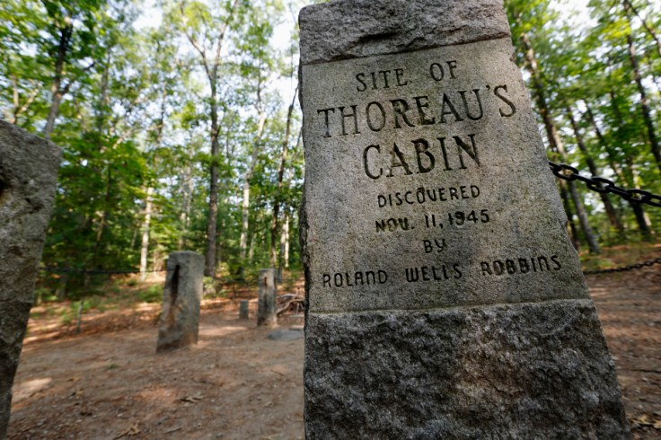 Site of Henry David Thoreau's cabin