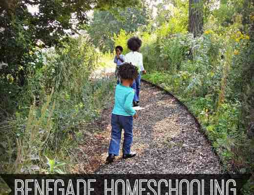 Become a Renegade Homeschooler and take homeschooling OUTSIDE of the home!