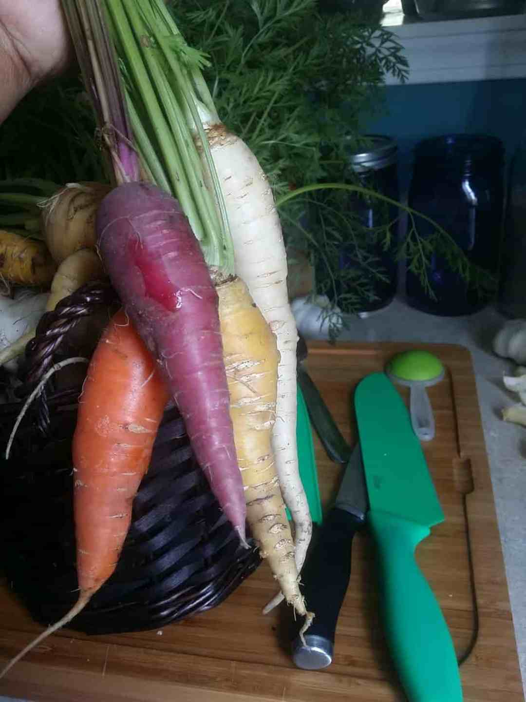 Rainbow colored carrots.