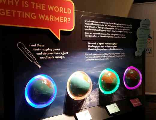 Weather to Climate Our Changing World Exhibit at Peggy Notebaert Nature Museum