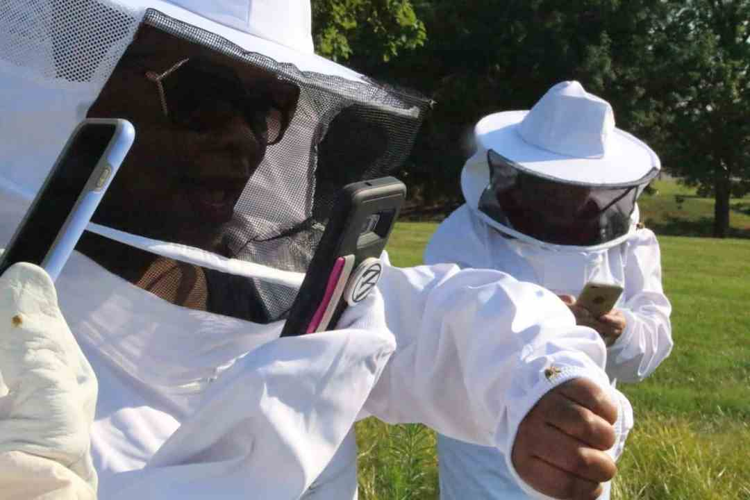 Learning Beekeeping at Monsanto