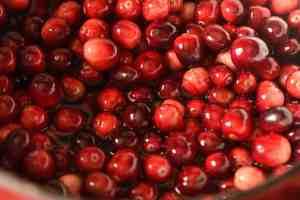 Oven Drying Cranberries