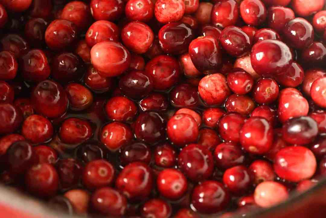 Oven Drying Cranberries